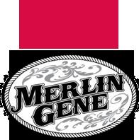 Merlin Gene